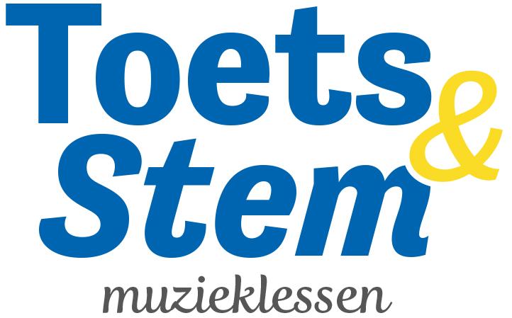 Toets & Stem, Muziekles online en bij jou thuis !!